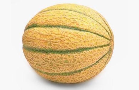Calibratrice per meloni