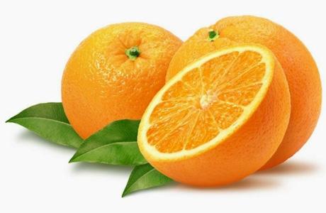 Citrus sorting equipments